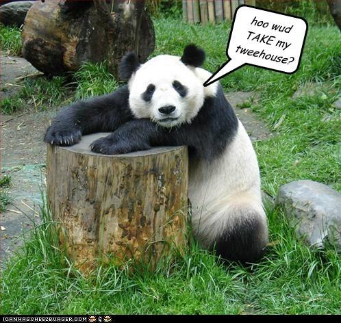 Sad gone stolen treehouse stump panda bears - 5771779072