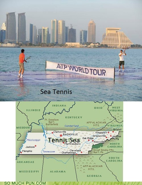 double meaning homophones lolwut sea Tennessee tennis - 5771866368