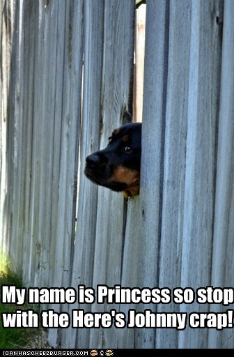 fence,heres-johnny,Movie,princess,rottweiler,the shining