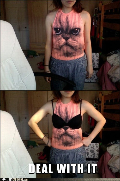 bra cat cat shirt clothes clothing Deal With It sunglasses tshirt T.Shirt - 5773178624