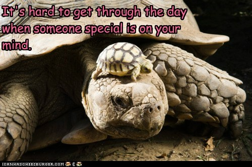 It's hard to get through the day when someone special is on your mind.