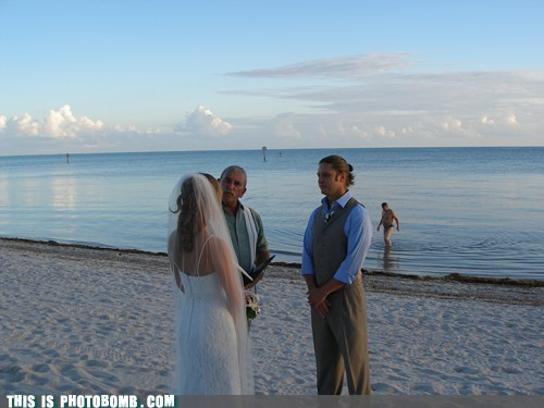 Awkward beach speak now or hold you peace speedo wedding - 5773354752