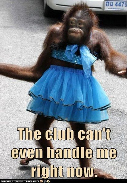 the-club-cant-even-handle-me fabulous orangutans dress