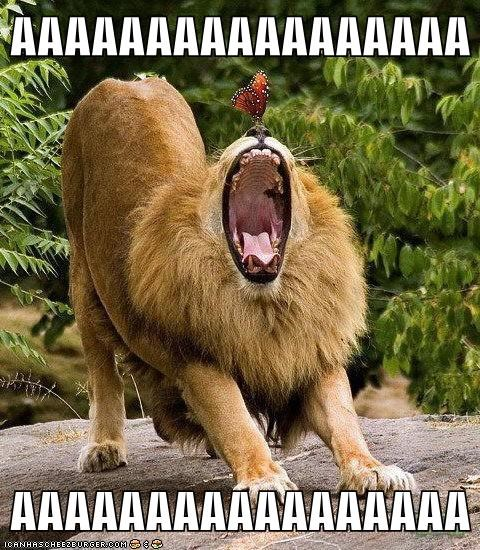 lions scary screaming butterflies - 5774461952