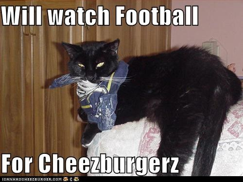 cheezburger football sports super bowl the Big Game TV - 5774628864
