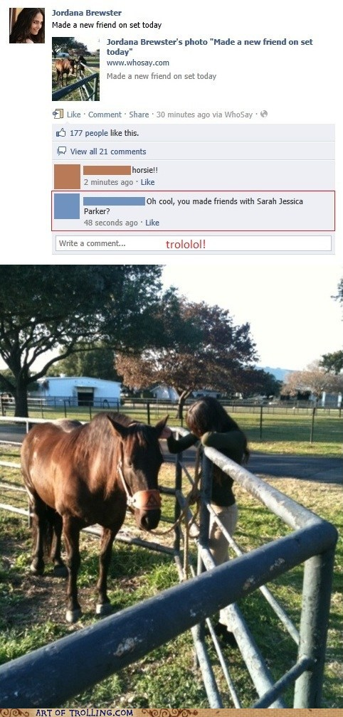 actor facebook horse sarah jessica parker - 5775045632