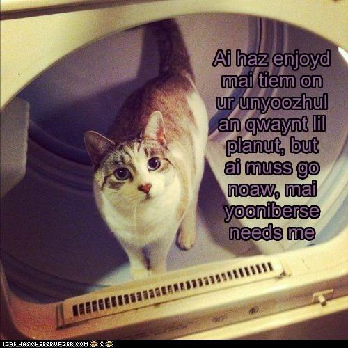 astronaut caption captioned cat dryer go leaving meme must now planet space Travel - 5775749888