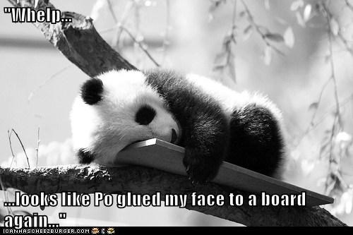 """Whelp... ...looks like Po glued my face to a board again..."""