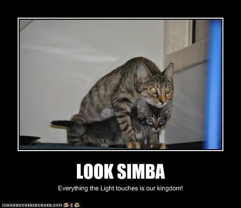LOOK SIMBA Everything the Light touches is our kingdom!