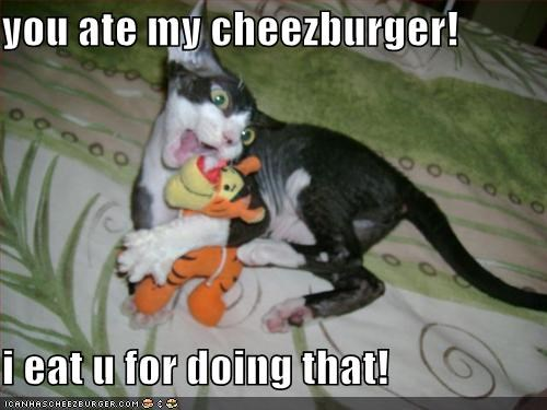 Cheezburger Image 577741568