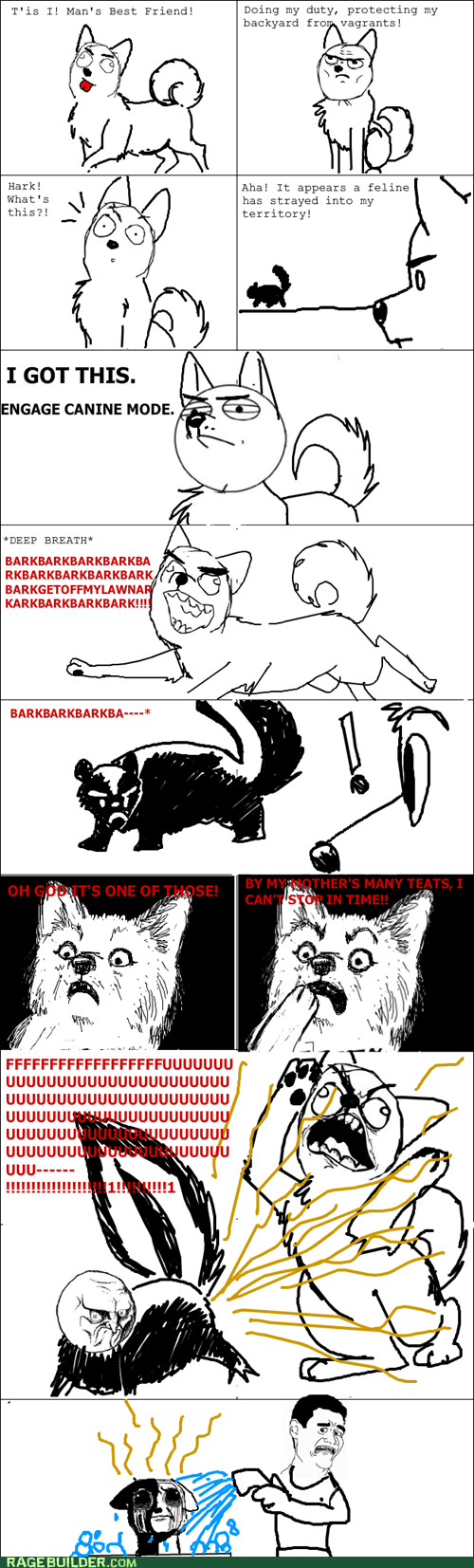 animals attack bark Cats dogs never again Rage Comics - 5777666816