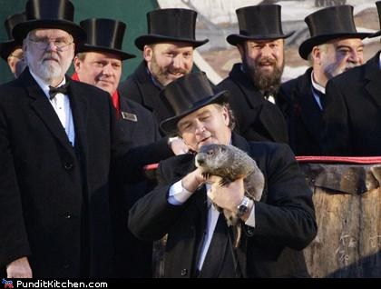 groundhog day political pictures punxsutawney phil winter
