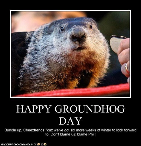 groundhog day groundhogs holidays punxsutawney phil traditions weather - 5777805824