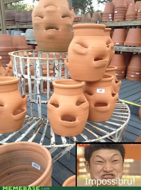 impossible,jars,Memes,pots