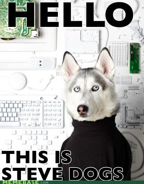 apple dogs jobs Memes steve jobs - 5778431232