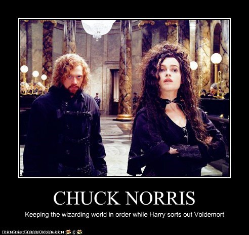 CHUCK NORRIS Keeping the wizarding world in order while Harry sorts out Voldemort