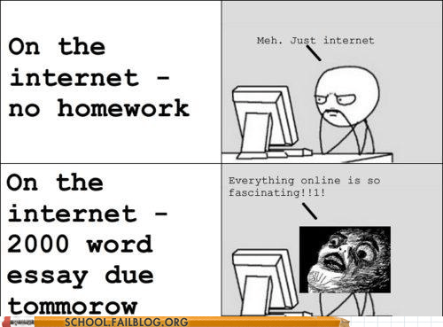 deadline,essay,internet,lolcats,rage comic