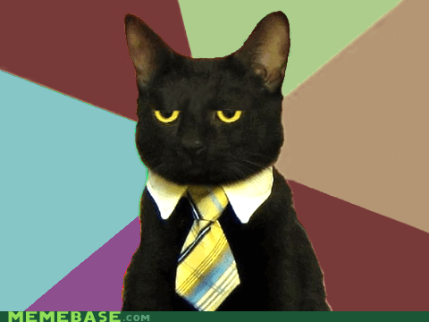 Business Cat,cat,coffee,colors,dark