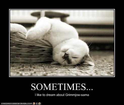 SOMETIMES... I like to dream about Grimmjow-sama