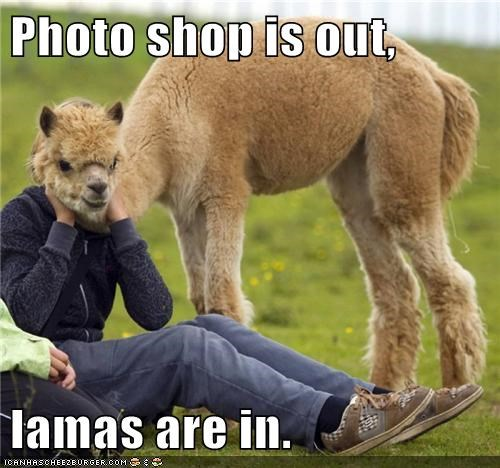 Photo shop is out, lamas are in.
