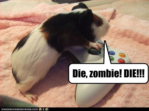 die guinea pig playing thumbs video games xbox 360 zombie - 5781789440