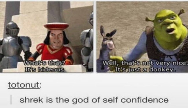 Funny Shrek memes for the rest of us. | Person - 's s hideous Well 3 not very nice s just donkey. totonut: shrek is god self confidence