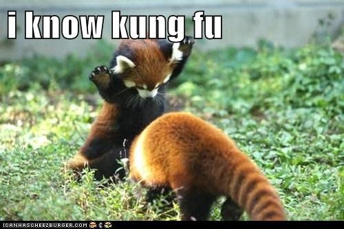 I know kung fu,keanu reeves,kung fu,neo,red panda,the matrix