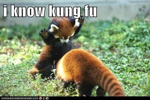 keanu reeves kung fu red panda the matrix - 5782801408