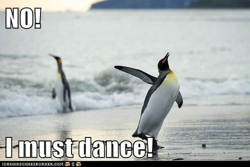 beach,dance,dancing,no,ocean,penguin,penguins