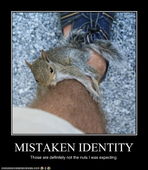 balls,double meaning,leg,mistaken identity,nuts,oops,squirrel,squirrels