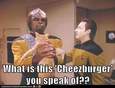 brent spiner,cat,cheezburger,data,icanhascheezburger,Michael Dorn,speak,spot,Star Trek,Worf