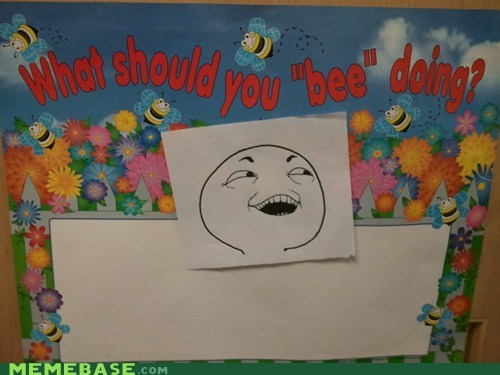 bees,BEES ARE THE BEST,I see what you did there,save the bees,school,The Internet IRL
