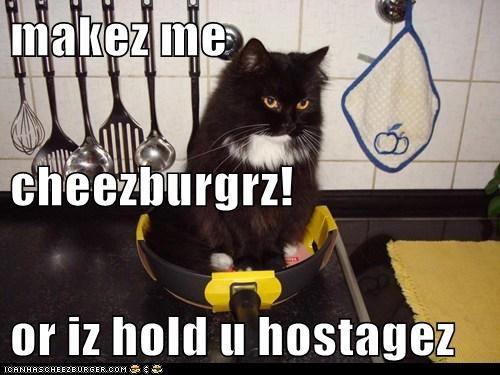Cheezburger Image 5783223552