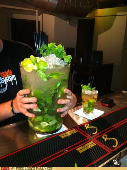 alcohol best of the week booze cocktail drink hangover mojito - 5783428864