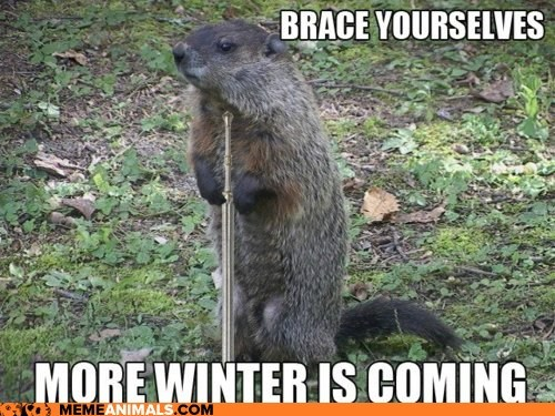 brace yourselves,Game of Thrones,groundhog day,groundhogs,Winter Is Coming