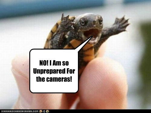 baby,cameras,filming,no,turtle,unprepared,vain