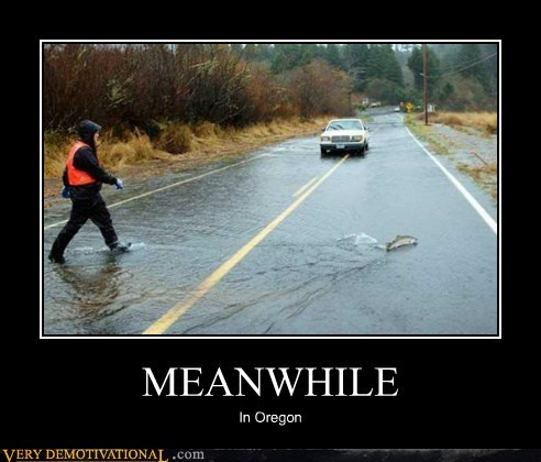 fish,flood,hilarious,Meanwhile,oregon,road,wtf