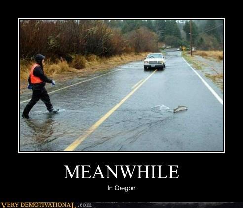 fish flood hilarious Meanwhile oregon road wtf - 5785325568