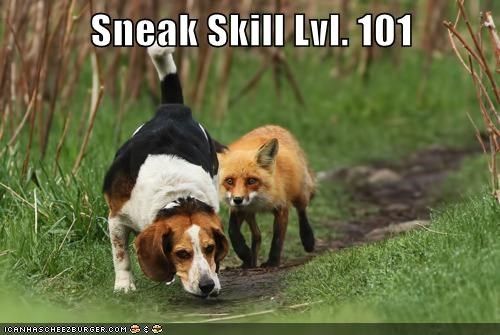 beagle dogs fox Hall of Fame sneak sneaky - 5786094080