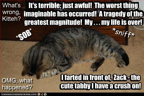 What's wrong, Kitteh? It's terrible; just awful! The worst thing imaginable has occurred! A tragedy of the greatest magnitude! My . . . my life is over! OMG, what happened? I farted in front of, Zack - the cute tabby I have a crush on! *SOB* *sniff* It's terrible; just awful! The worst thing imaginable has occurred! A tragedy of the greatest magnitude! My . . . my life is over! I farted in front of, Zack - the cute tabby I have a crush on!