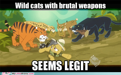 brutal weapons little girls meme seems legit wild cats - 5787091712