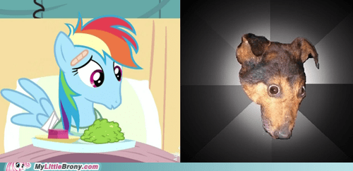 comparison meme poor dashie rainbow dash - 5787202560