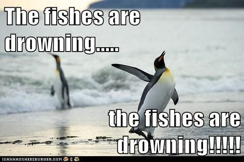 dramatic,drowning,eating,fish,help,penguin,save