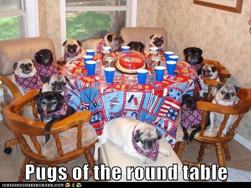 awesome best of the week group meeting pug pugs round table