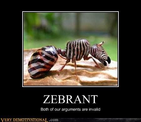 ZEBRANT