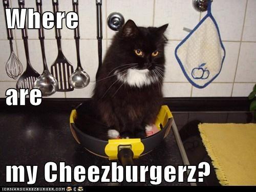 Cheezburger Image 5789105664