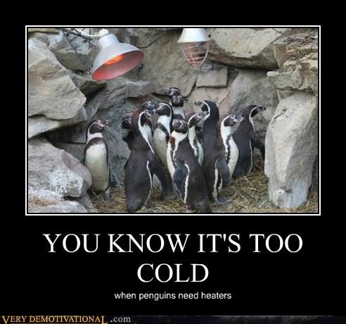 cold heater penguin Terrifying - 5790231296