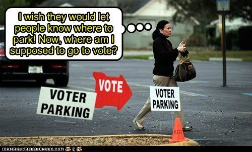 political pictures,suburbia,voting