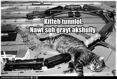 caption captioned cat doing it wrong FAIL model sleeping track train tunnel - 5793222656