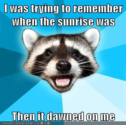 dawn Lame Pun Coon sunrise sunset - 5793844224